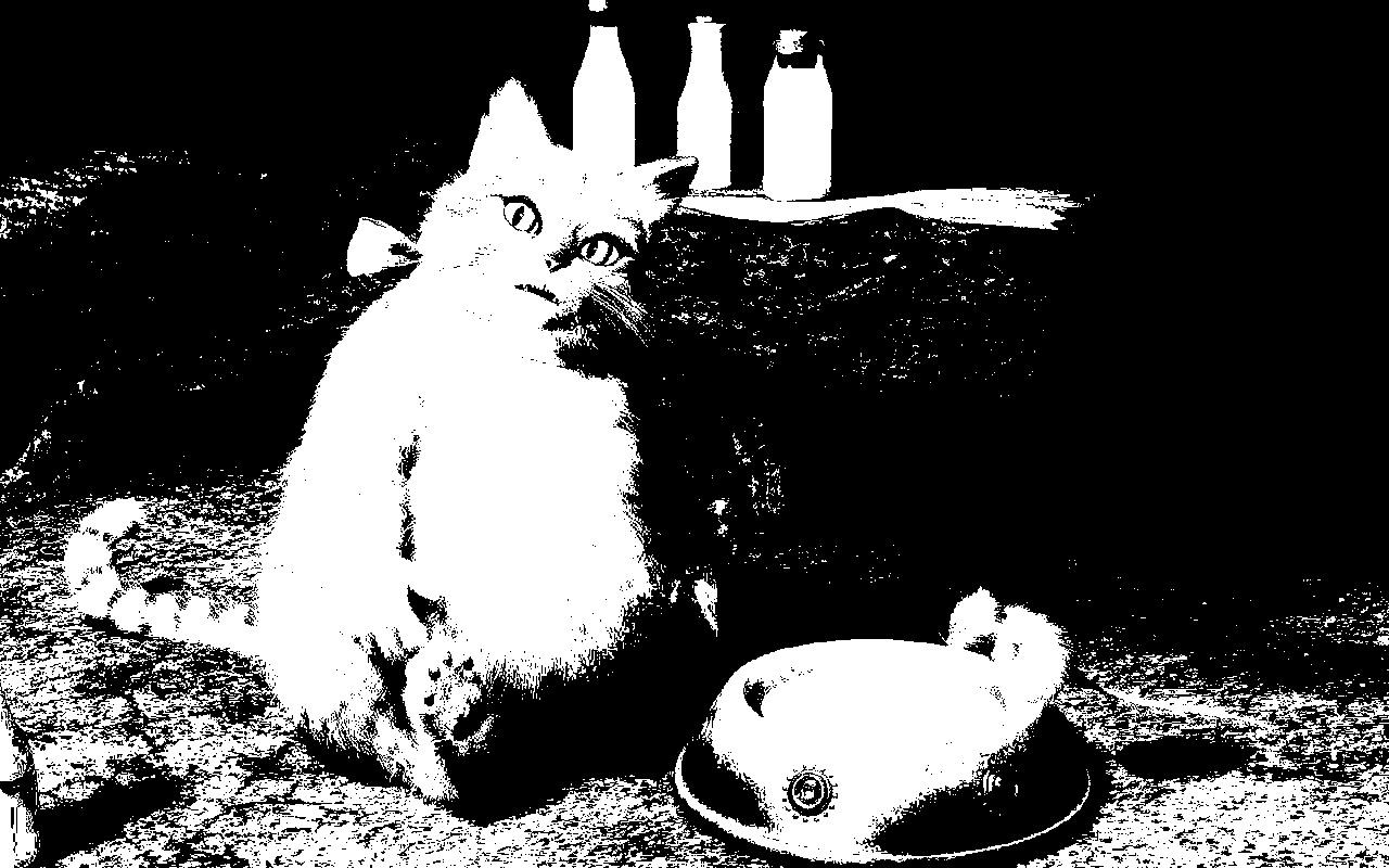 Изображение кота для работы с OpenCV