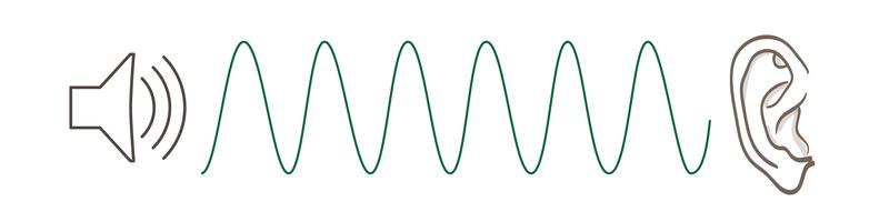 Схема звуковых колебаний